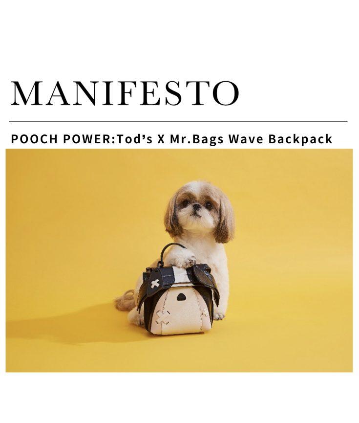 Manifesto Asia Mr. Bags